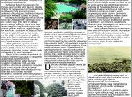 Çağdaş Develi Gazetesi, 19 Haziran 2020, Sayfa 7