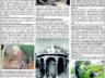 Çağdaş Develi Gazetesi, 08 Ocak 2021, Sayfa 7