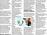 Çağdaş Develi Gazetesi, 16 Temmuz 2021, Sayfa 4